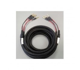 O2A EXPERIENCE câble haut parleur